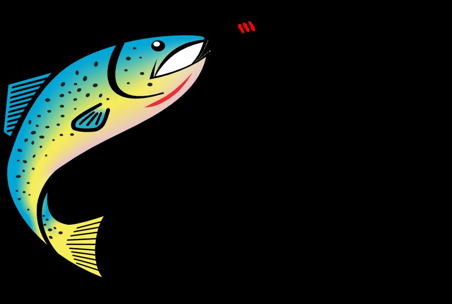 Kimberley Fly Fishing Logo